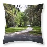 Road To Ruins Throw Pillow