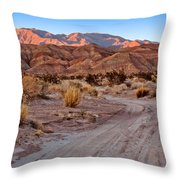 Road To The Badlands Throw Pillow