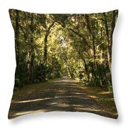 Road To The Enchanted Forest Throw Pillow