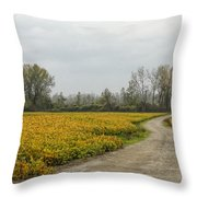 Road To The River Throw Pillow