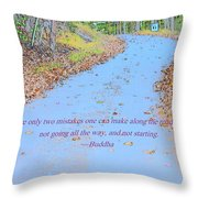 Road To Truth Throw Pillow