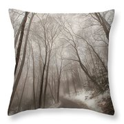 Road To Winter Throw Pillow