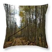 Road To Zion Throw Pillow