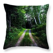 Road Trip- Back Country Road Throw Pillow