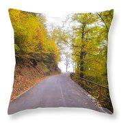 Road With Autumn Trees Throw Pillow