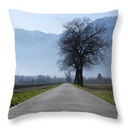 Road With Trees Throw Pillow