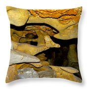 Roadrunner And The Rabbit - Georgetown Texas  Throw Pillow