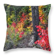 Roadside Fall Colors Throw Pillow