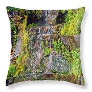 Roadside Waterfall. Mount Rainier National Park Throw Pillow