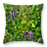 Roadside Wildflowers Throw Pillow