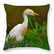 Roaming Through The Field Throw Pillow by Tony Beck