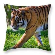 Roaming Tiger Throw Pillow