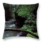 Roaring Fork Creek  Throw Pillow