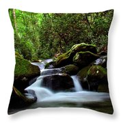 Roaring Fork Waters Throw Pillow