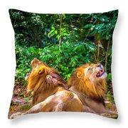 Roaring Lions Throw Pillow