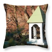 Robin 1 Throw Pillow