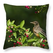 Robin And Berries Throw Pillow
