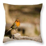 Robin At Feeder Throw Pillow
