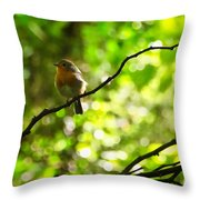 Robin In The Glade Throw Pillow