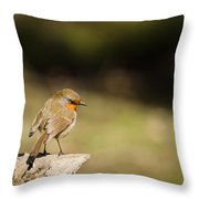 Robin On A Log Throw Pillow