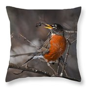 Robin Pictures 100 Throw Pillow