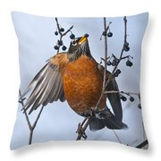 Robin Pictures 84 Throw Pillow