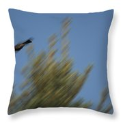 Robin Projectile Throw Pillow