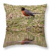 Robin Reflection Throw Pillow