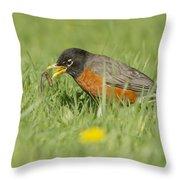 Robin Vs Worm Throw Pillow