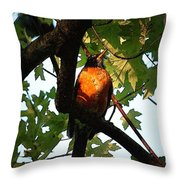 Robin Waiting Throw Pillow