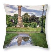Rochester Reflection Throw Pillow