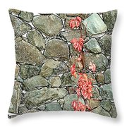 Rock And Ivy Design  Throw Pillow