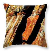 Rock Art 21 Throw Pillow by ABeautifulSky Photography