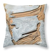 Rock Art In California's Point Lobos State Natural Reserve Throw Pillow by Bruce Gourley