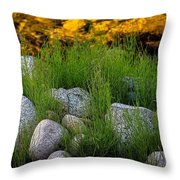 Rock Bottom Throw Pillow
