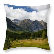 Rock Creek Canyon 1 Throw Pillow by Roger Snyder
