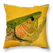 Rock Creek Rainbow Throw Pillow by Lauren Leigh Hunter Fine Art Photography