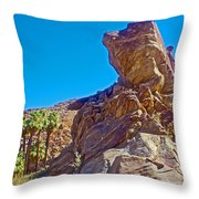Rock Formation Higher Than Fan Palms Along Lower Palm Canyon Trail In Indian Canyons Near Palm Sprin Throw Pillow