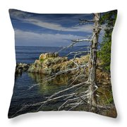 Rock Formations And Trees On The Shoreline In Acadia National Park Throw Pillow