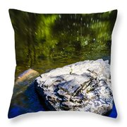 Rock In The Water Throw Pillow