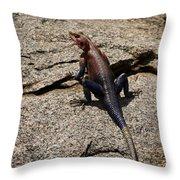 Rock Island Lizard   #8103 Throw Pillow