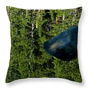 Rock Out Of Reflecting Lake Throw Pillow