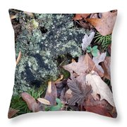 Rock Running Cedar Leaves And Lichen  Natural Abstract Throw Pillow