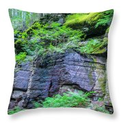 Rock Wall Trail Of The Cedars Glacier National Park Painted Throw Pillow