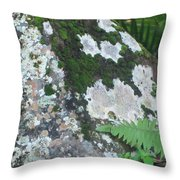 Rock With Moss Throw Pillow