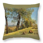 Rockland County. California Throw Pillow