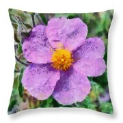 Rockrose Wild Flower Throw Pillow