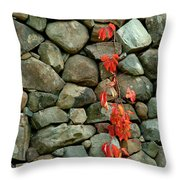 Rocks And Ivy Throw Pillow