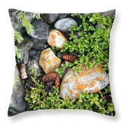 Rocks And Lichen Throw Pillow