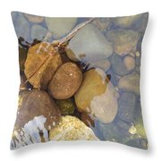 Rocks And Pebbles 2 Throw Pillow